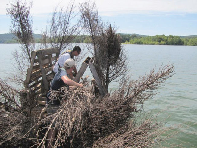 "Image result for U.S. Fish and Wildlife holds annual ""Christmas Tree Drop"""